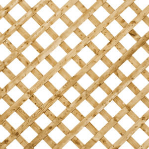 lattice_4x8_regular